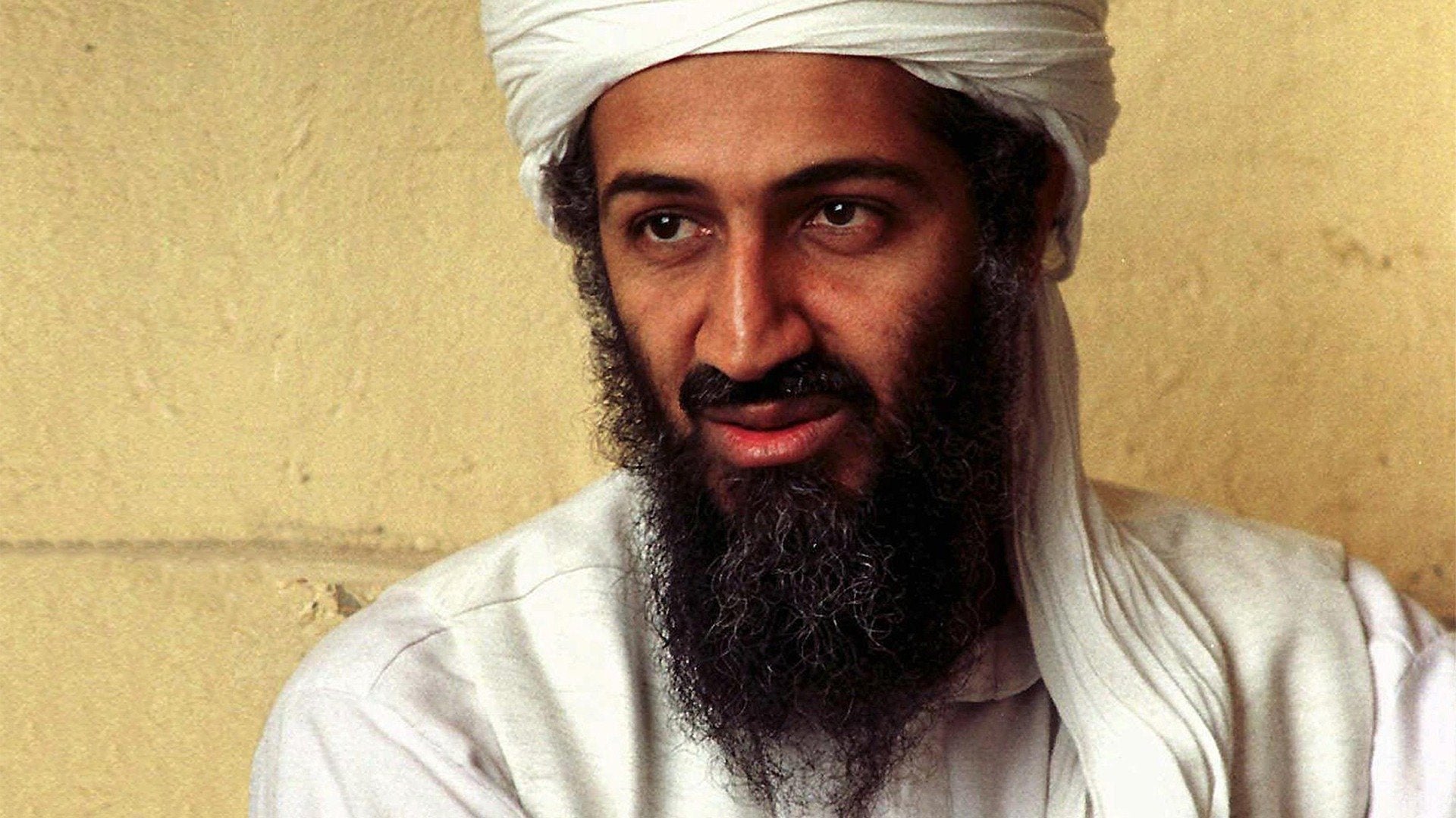 Capturing Bin Laden