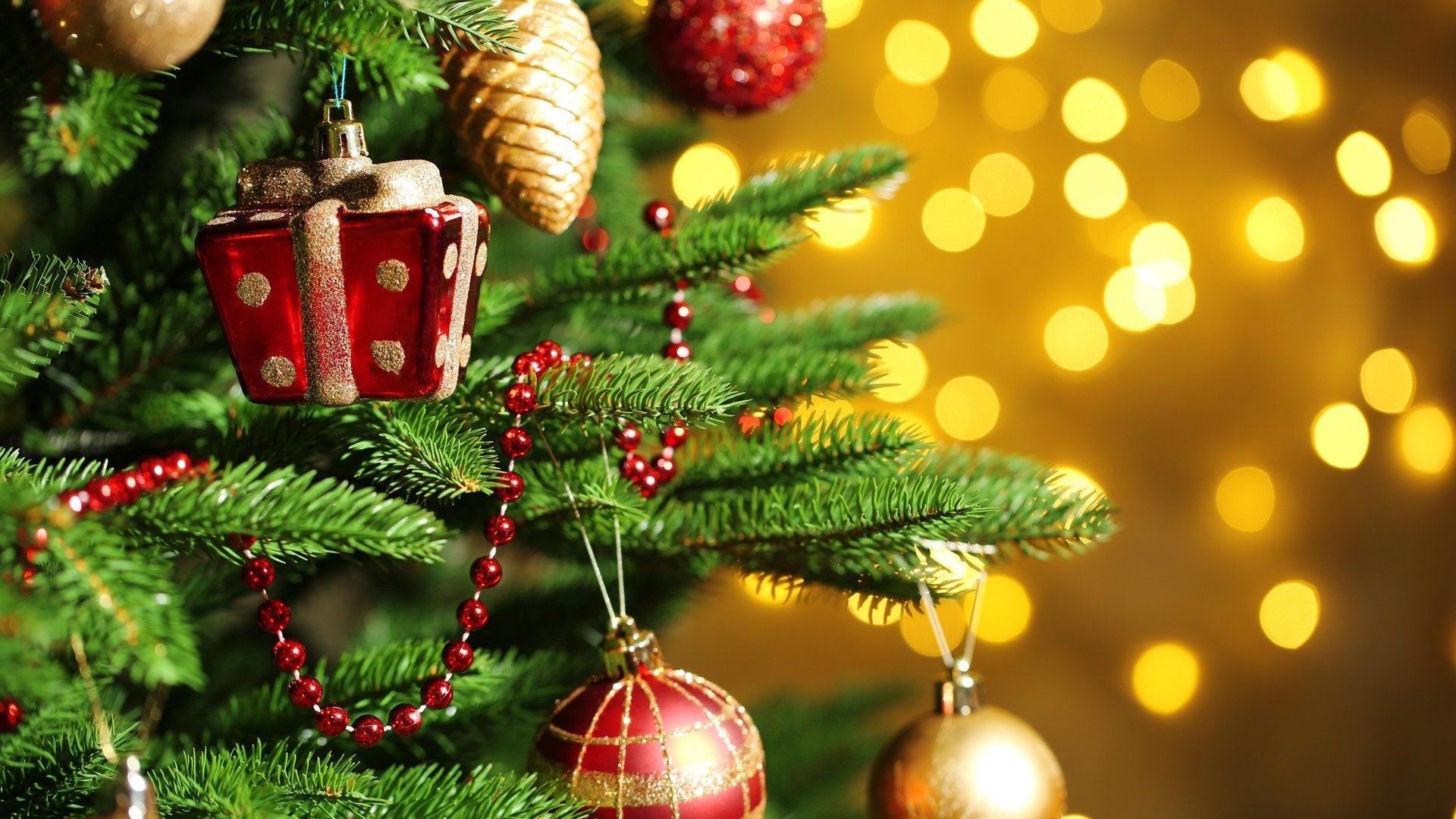 Masters of Flip Holiday Special: Wilson Wonderland