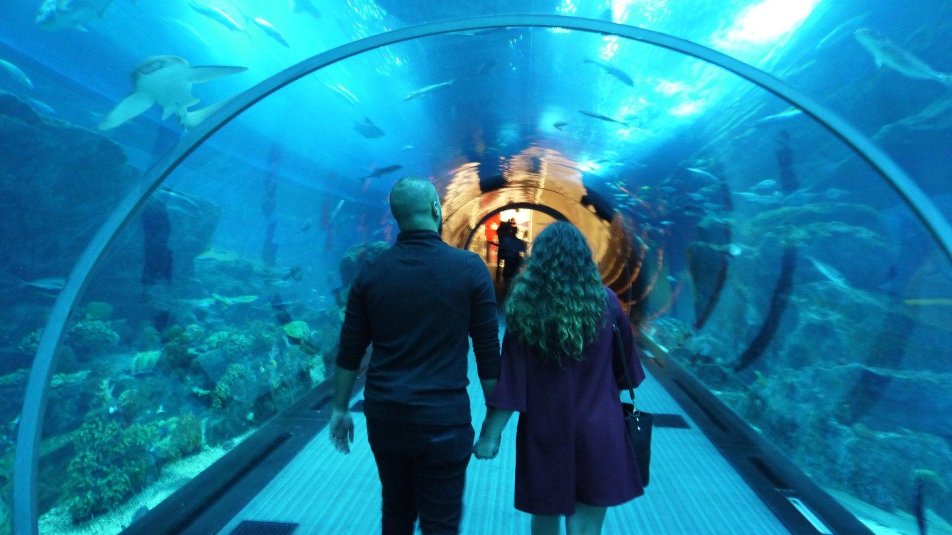 Xtreme Underwater