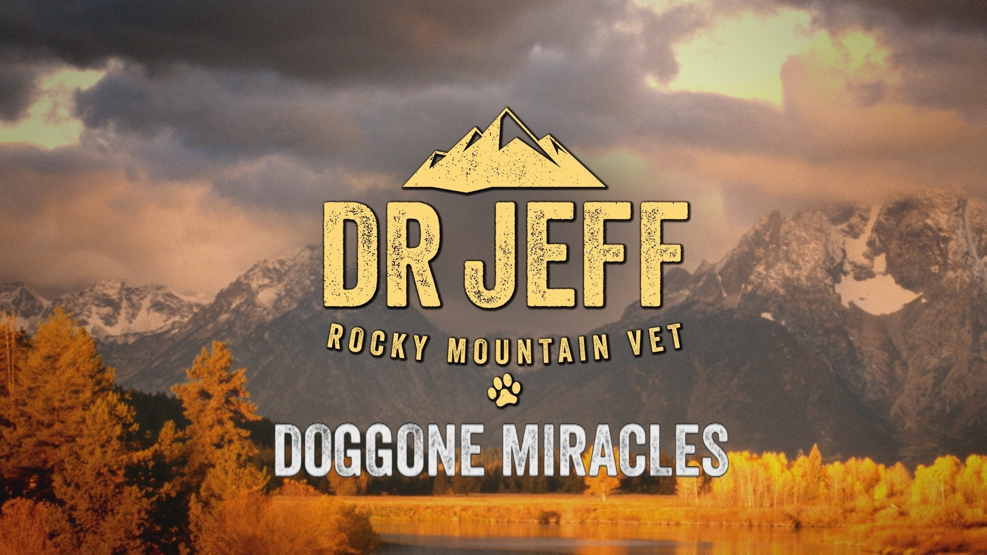Dr. Jeff Rocky Mountain Vet: Doggone Miracles