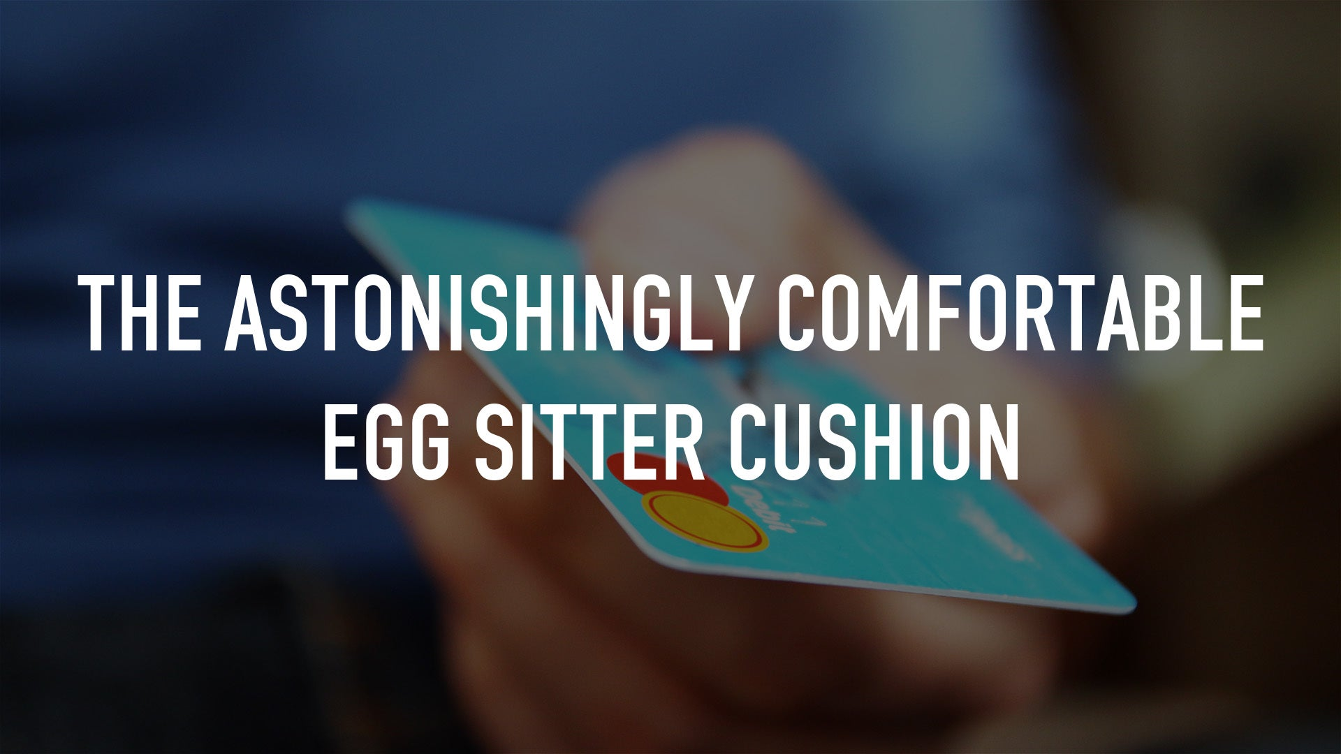 The Astonishingly Comfortable Egg Sitter Cushion