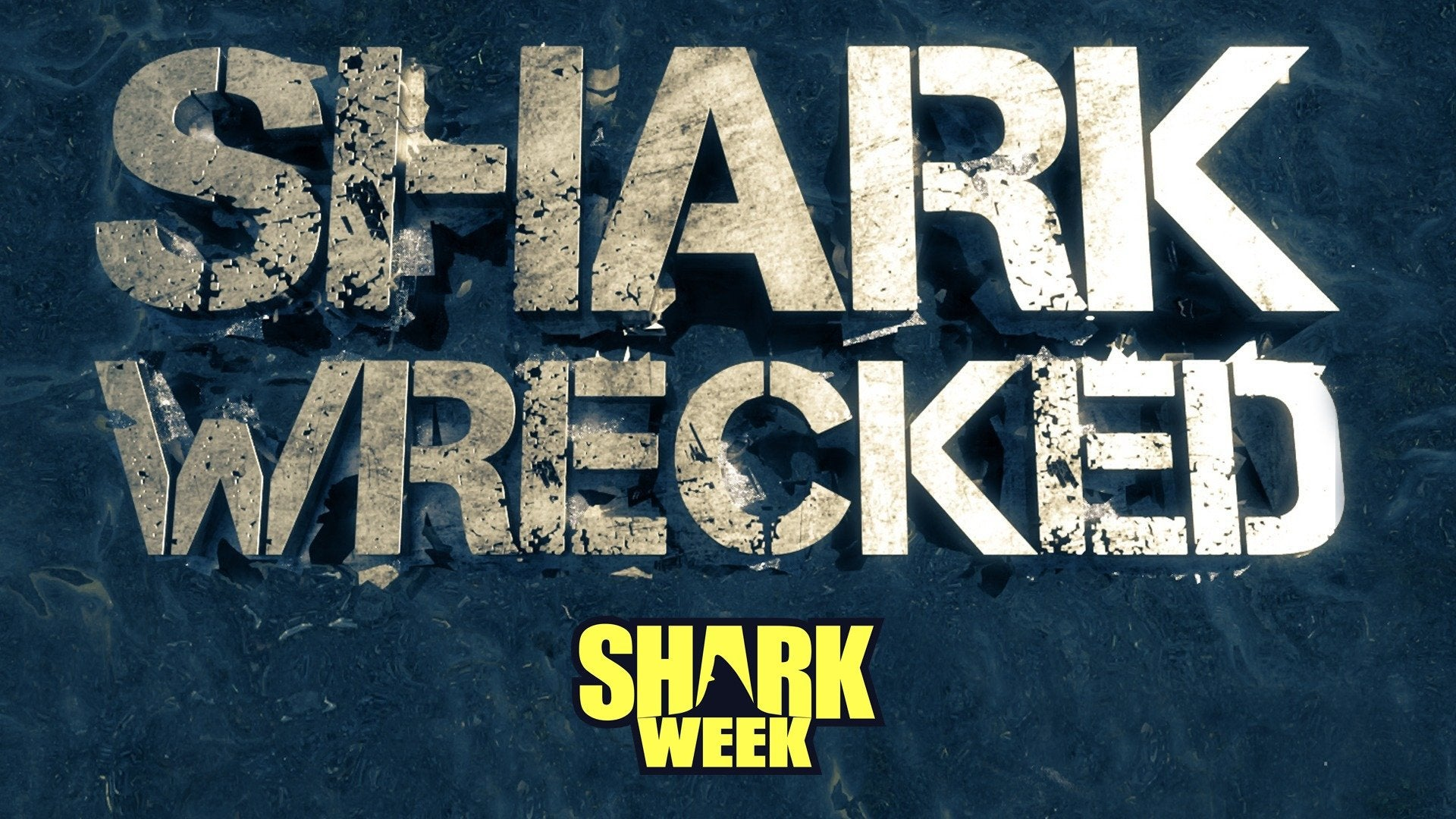 Sharkwrecked