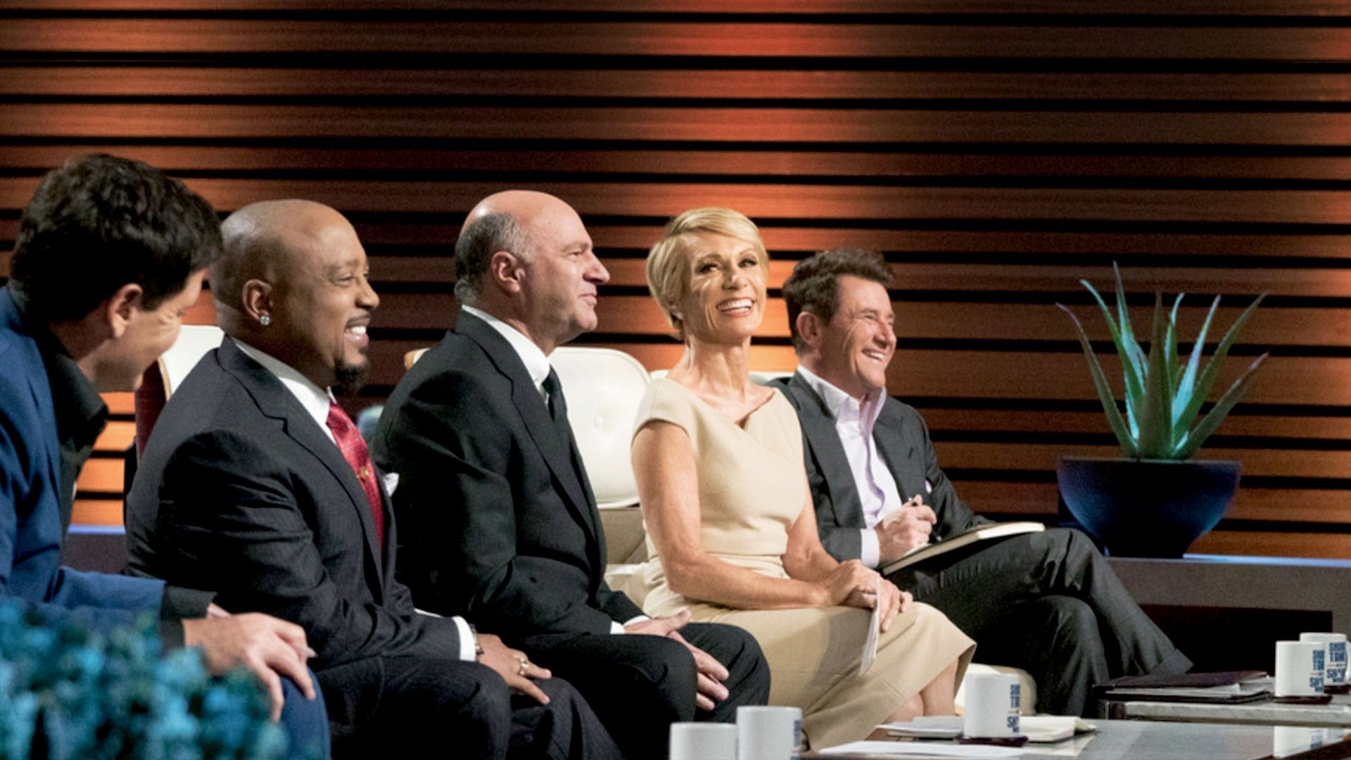 Shark Tank Meets Shark Week: Sharkopedia Edition