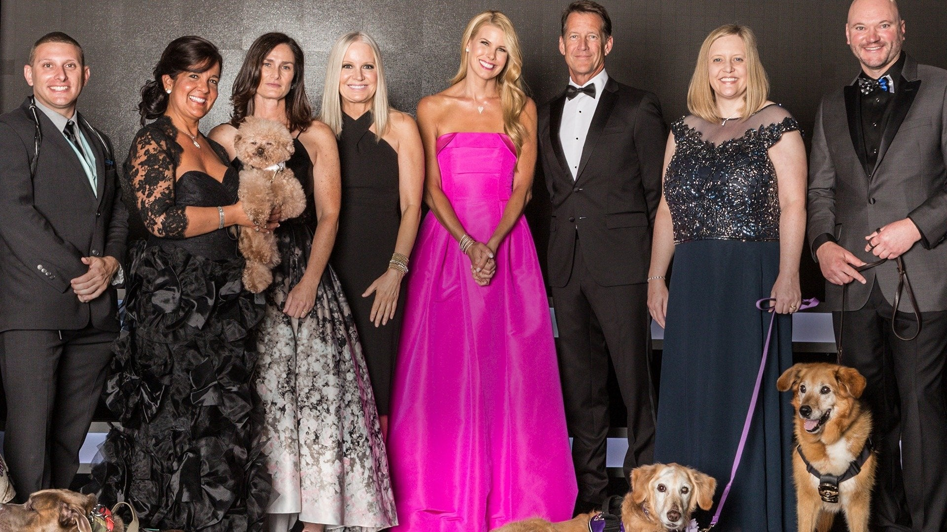 2018 American Humane Hero Dog Awards