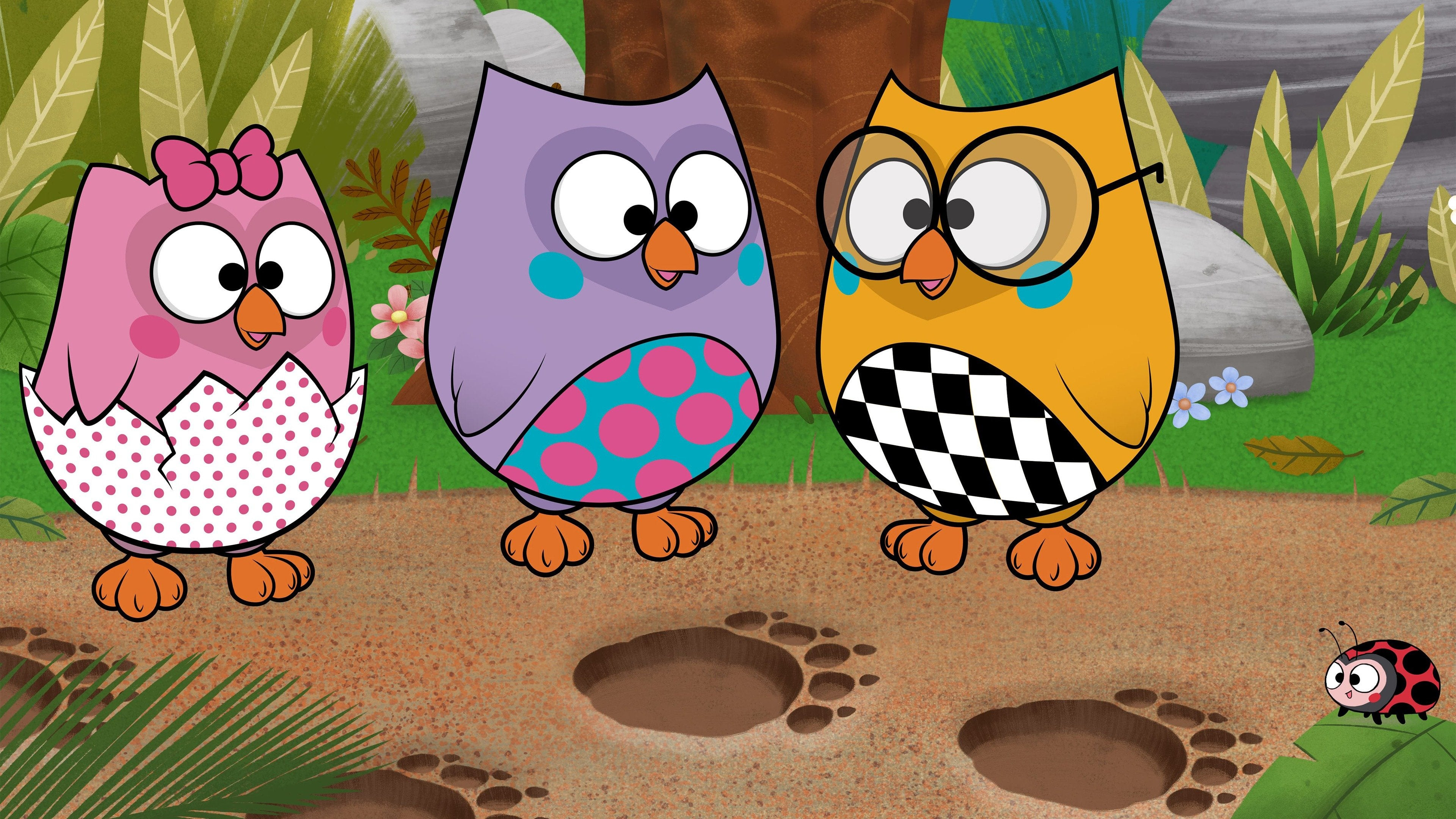 Bubu and the Little Owls