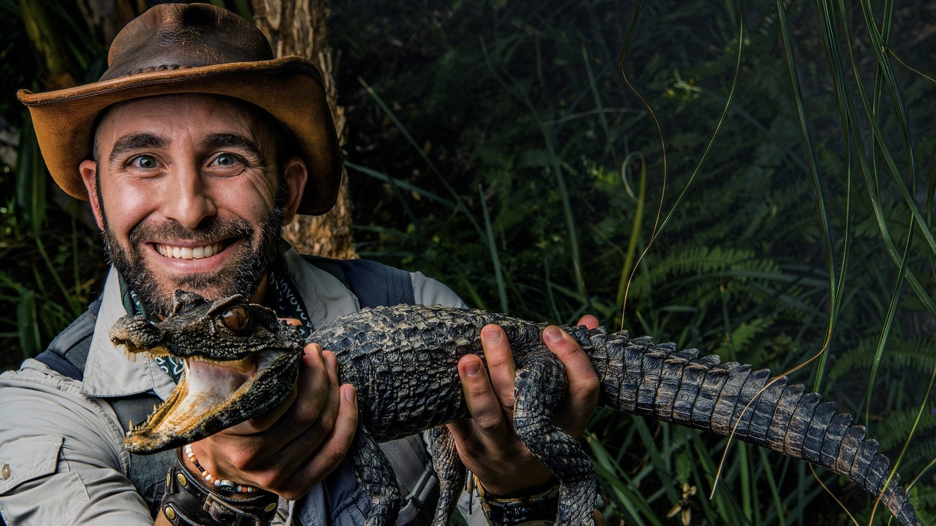 Coyote Peterson: Return to the Wilderness