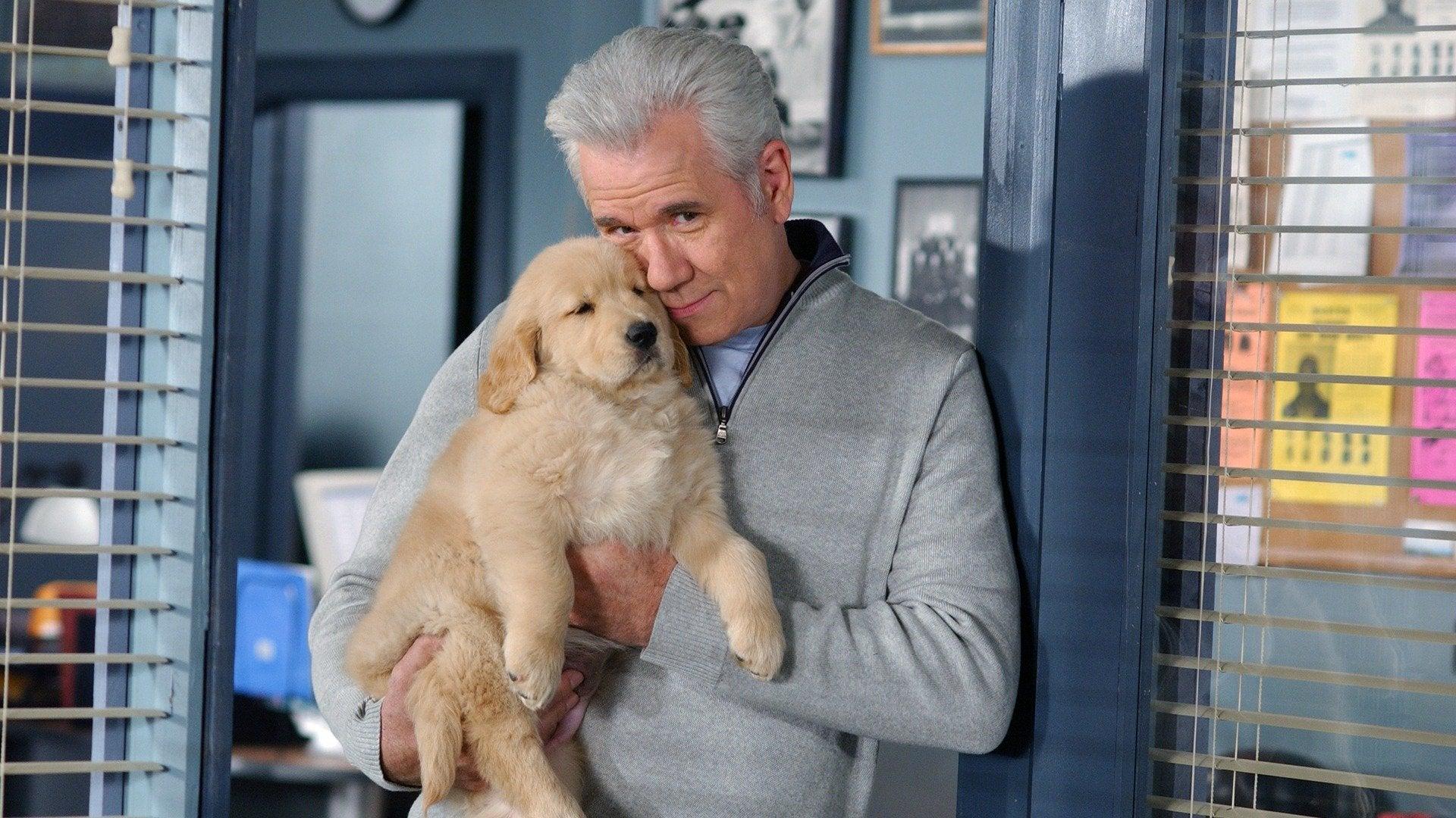 McBride: Dogged