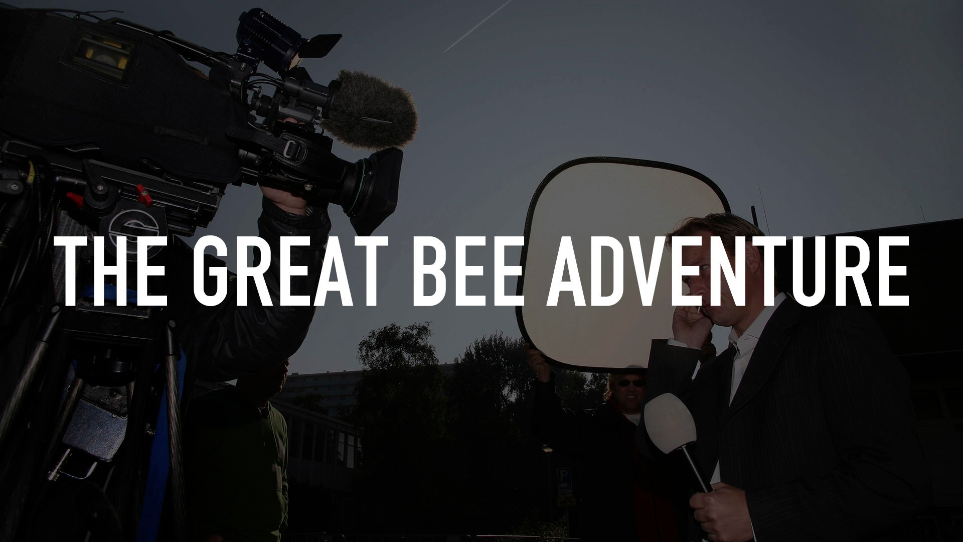 The Great Bee Adventure
