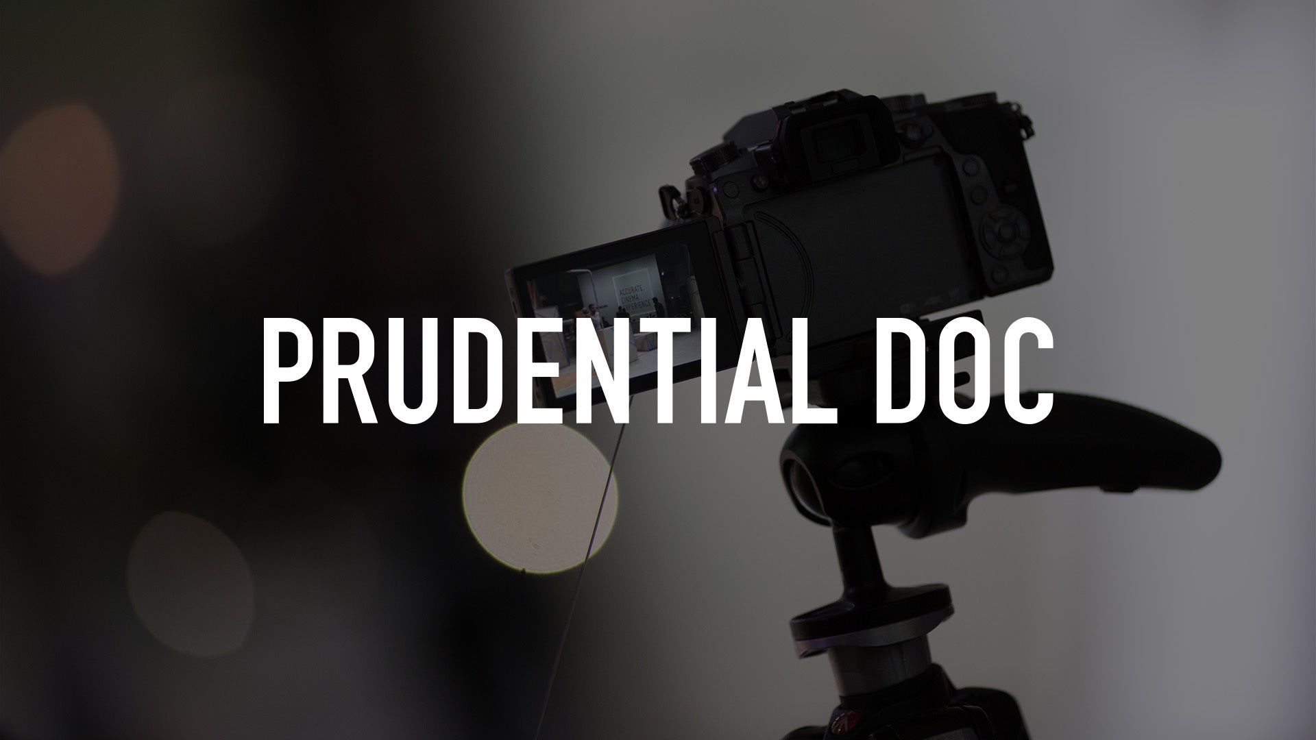 Prudential Doc