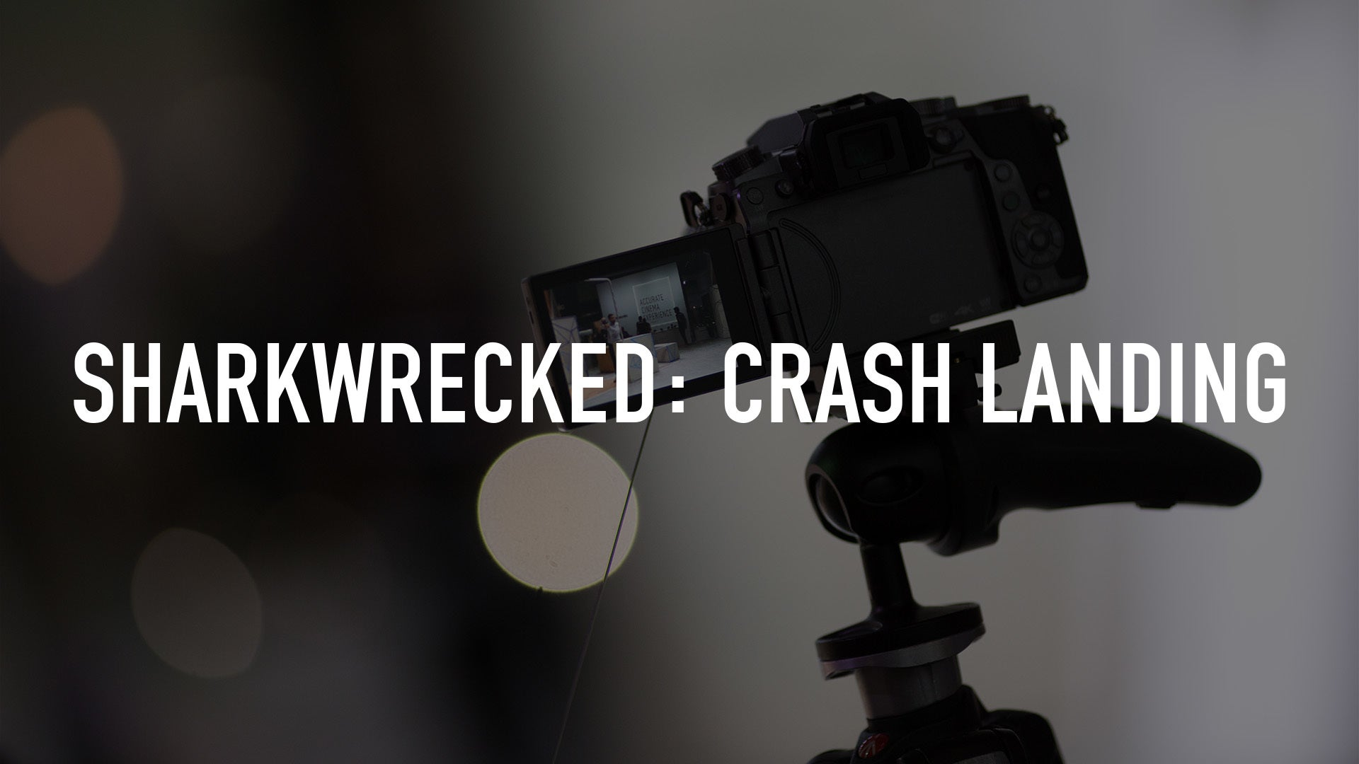 Sharkwrecked: Crash Landing