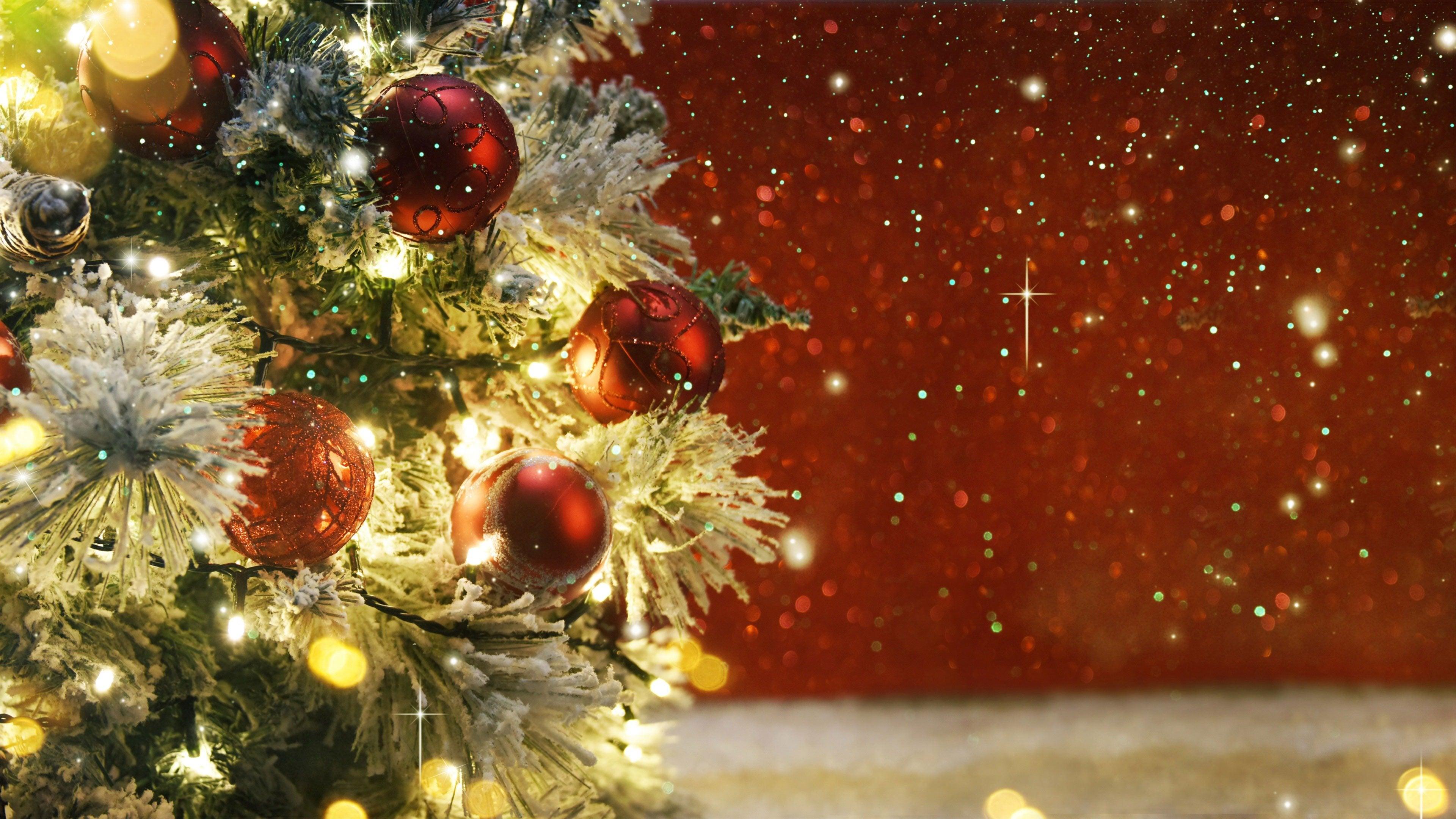 DWO Christmas