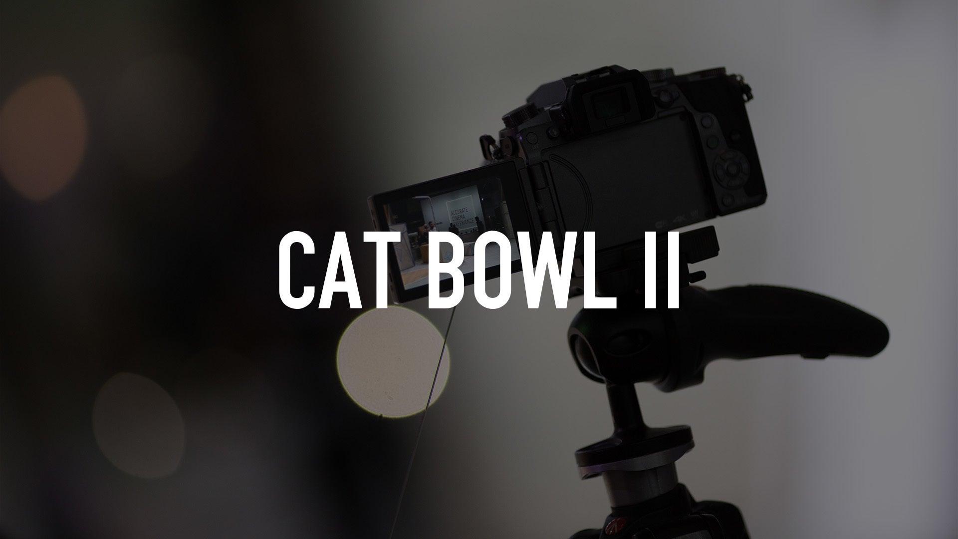 Cat Bowl II