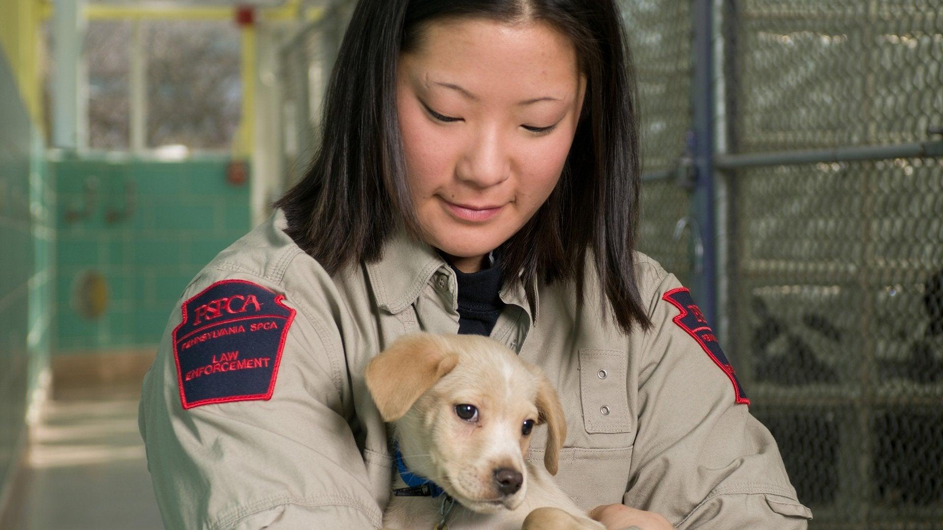 Animal Cops: Philadelphia