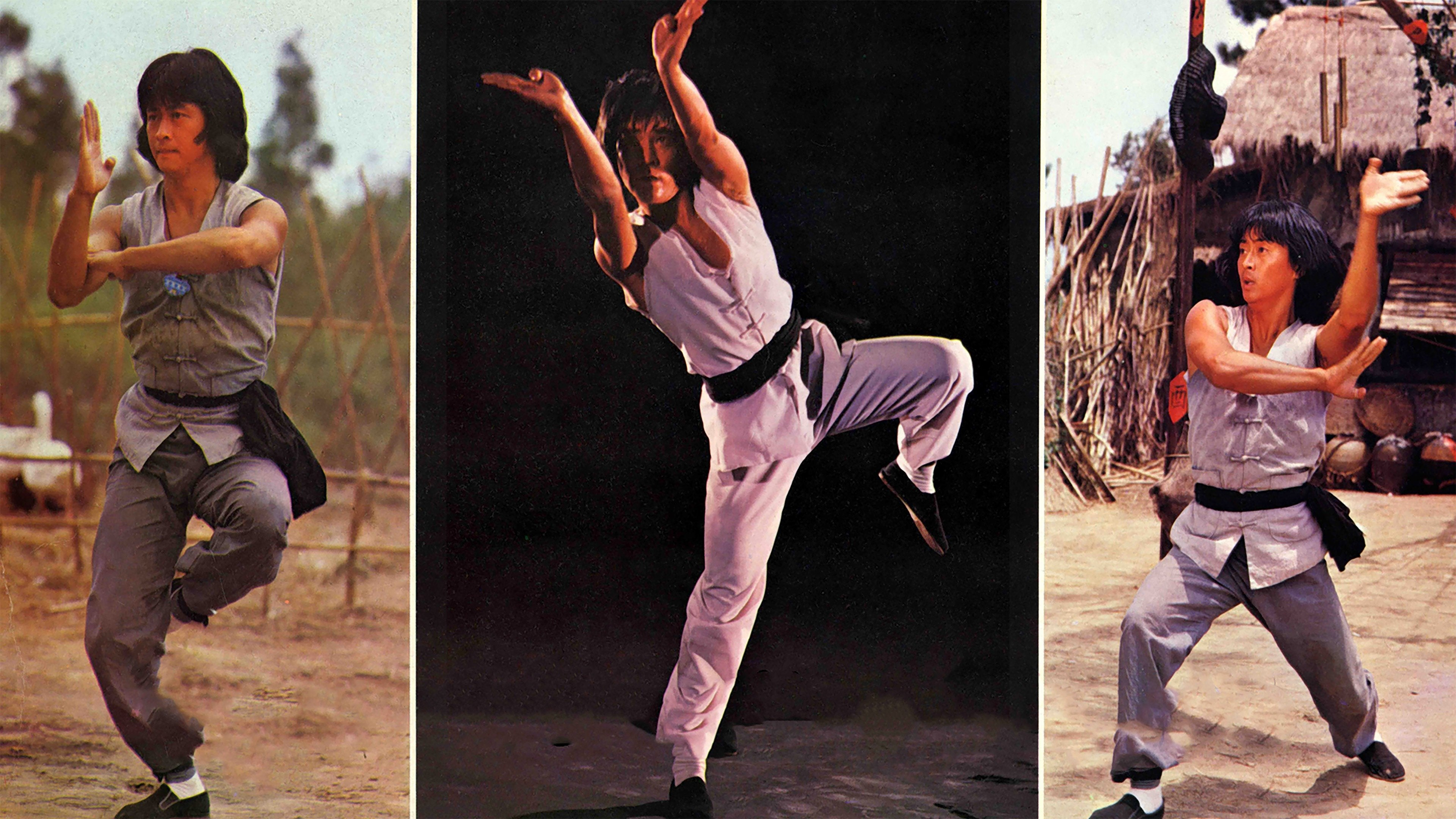 The Secret Shaolin Kung Fu