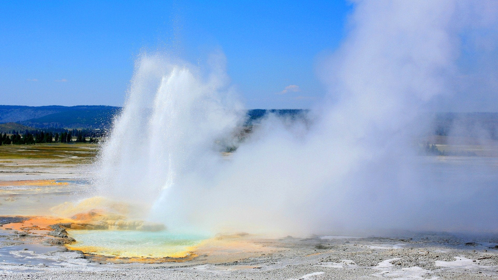 Planet Earth: Yellowstone
