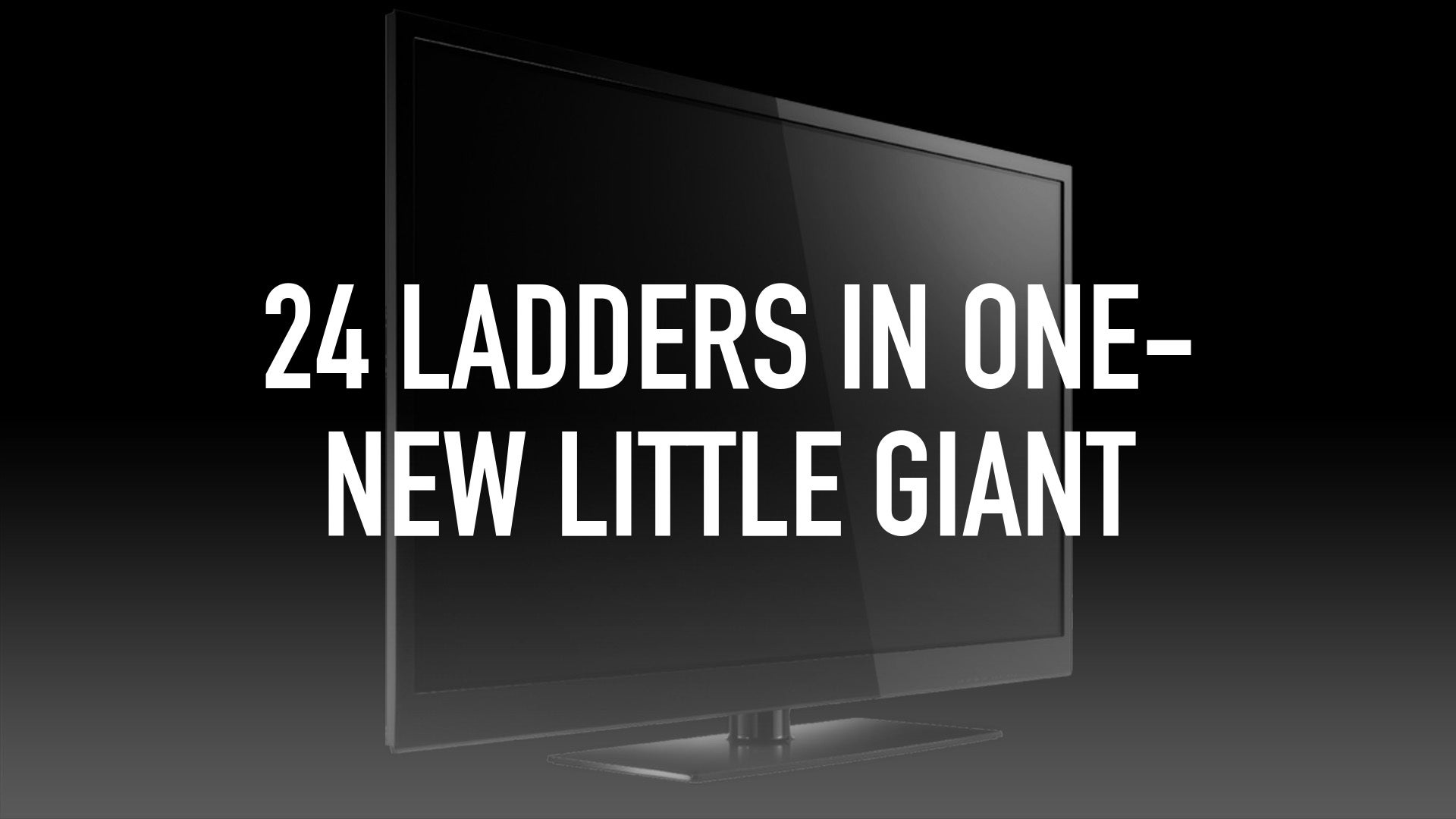 24 Ladders in One- New Little Giant